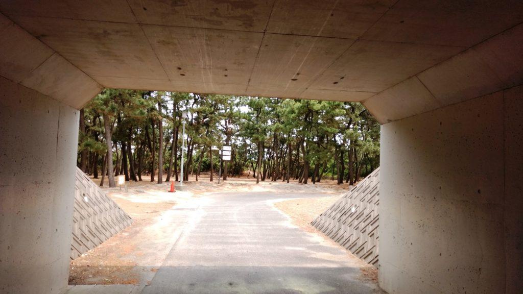 お台場公園キャンプ場トンネル